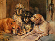 OTTERHOUND CHARMING DOG GREETINGS NOTE CARD, FOUR DOGS IN KENNEL