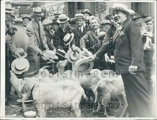 1932 Goats Eat Straw Hats In a Buy a New One Campaign Portland OR Press Photo