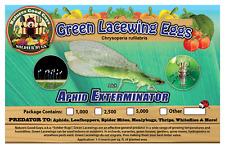 NaturesGoodGuys Green Lacewing Eggs 1,000 - A Natural Aphid Predator