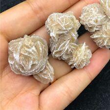 Natural Desert Rose Selenite Crystal Stone Flower Table Desk Decoration Specimen