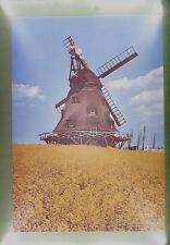 CPA Germany Ostholstein Wismar Windmill Moulin a Vent Windmühle Wiatrak w69