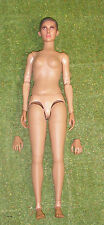 DRAGON DREAMS DID WW II GERMAN SOPHIE LOOSE 1/6 SCALE NUDE NAKED DOLL & HANDS
