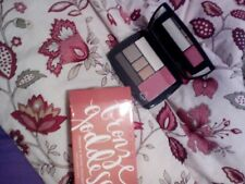 Skinn Bronze Goddess Eye Shadow And Blush Compact By D James Free Ship