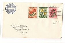 Netherlands Paquebot cover flowers x 3 New York SS Nieuw Amsterdam (bap)