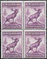 Mint H/NH Canada Newfoundland 1932-37  F 5c Block of 4 Scott #191a Stamps