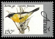 """ARUBA 165 - Bananaquit """"Coereba flaveola"""" (pb18867)"""