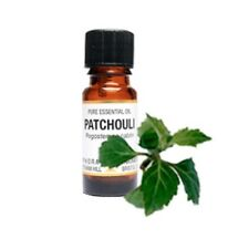 1 Amphora Aromatics Quality Patchouli Essential Oil. 10ml / 100%
