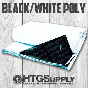 BLACK & WHITE POLY 10' x 10' Panda Film Reflective Sheet GROW ROOM 100 Sq. Ft.