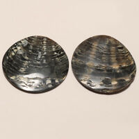 Natural Mexcian Abalone Pearl Shell Pair Loose Gemstone for jewelry Making Gifts