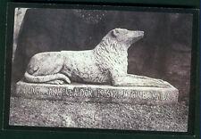 POSTCARD- SIR WALTER SCOTT'S DOG 'MAID' ON HIS GRAVE by FOX TALBOT