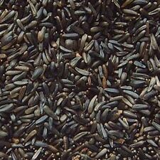 1.9 Kg Niger Seed Wild Garden Bird & Goldfinch Feed Food Seeds Grip Seal Pack