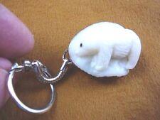 (tne-Bea-Po-400) Polar Bear bears Keychain key Tagua Nut Figurine carving Palm
