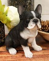 "Realistic Lifelike Black French Bulldog Puppy Dog With Glass Eyes Statue 7""Tall"