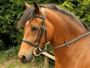 Windsor Leather Cavesson Snaffle Horse Riding Bridle and Reins, Black or Havana