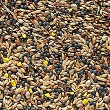 20KG JOHNSTON AND JEFF'S FAVOURITE CANARY MIXTURE WITH EGG BISCUIT SEED FEED