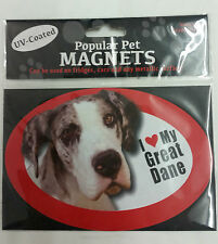 Humor Dog Magnets
