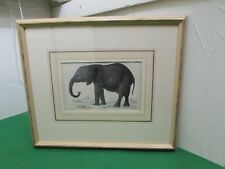 19th Century Hand Coloured Engraving Elephant, Oliver Goldsmith History Earth