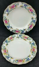 Pair of Vintage Booths A8042 Floradora 21.5cm Wide Soup Bowls