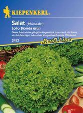 Kiepenkerl - Salat * Lollo Bionda grün * Pflücksalat 2482