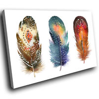 A637 Brown Blue Bird Feathers Funky Animal Canvas Wall Art Large Picture Prints