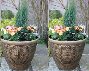 2 x Large Plastic Round Garden Plant Pots Flower Pot Planter Cromarty Gold 36cm