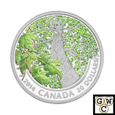 2014 'Spring Splendour-Maple Canopy' Colorized Prf $20 Fine Silver Coin(13880)NT