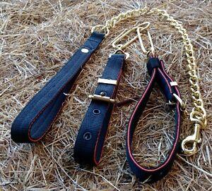 ST24 Webbing Dog Collar Couples & Chain Lead Set Terrier/Lurcher/Hound/Gundog
