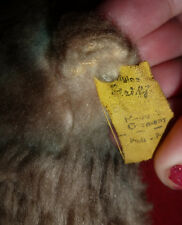 VINTAGE OLD STEIFF CUTE SQUIRREL TOY W EAR BUTTON & YELLOW TAG COSY ? ANTIQUE