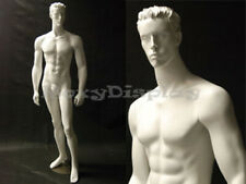 Male Mannequin Manequin Manikin Dress Form Display #Md-Cct6W