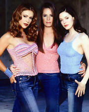 Holly Marie Combs Rose McGowan Alyssa Milano Charmed 24x30 TV Poster sexy busty