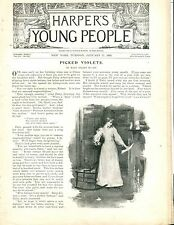 Harper's Young People Magazine January 17 1893 Pickled Violets ACC 042417nonjhe