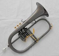 Professional new Black Nickel Flugelhorn Monel Piston Bb Flugel Horn With Case