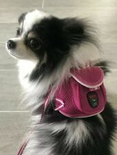 NWT Pet Soft Adjustable Backpack Harness With Leash Set For Small Dog Cat Pink