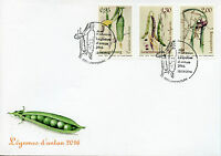 Luxembourg 2016 FDC Vegetables of Yesteryear 3v Set Cover Nature Plants Stamps