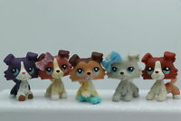 5× Littlest Pet Shop LPS Collie Dogs #58 #1676 #1262 #1542 #363 Authentic Rare