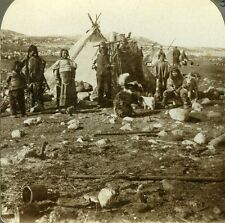 Stereoview Photo Artctic Regions Esquimaux Natives Children Dogs Greenland