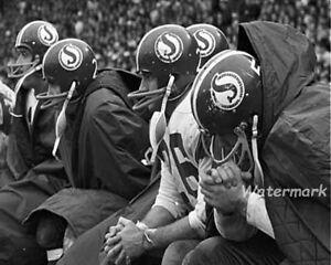 CFL 1960's Saskatchewan Roughriders on the Bench Black & White 8 X 10 Photo Pic