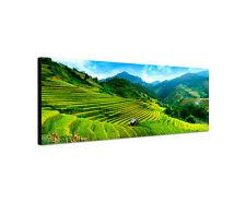 120x40cm Reisterrassen Panorama Vietnam Asien Feld grün Leinwand Bild Sinus Art