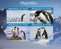 Chad Birds on Stamps 2020 MNH Penguins Emperor Penguin Fauna 4v IMPF M/S