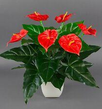 Anthurie Real Touch 56x50cm rot im weißen Dekotopf ZJ Kunstblumen künstliche