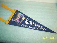 "Rare 1960s Roseland Amusement Park - Canandaigua NY Felt Pennant 12"""