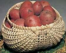 """Blue Ridge Basket Kits Potato Basket 7""""X12""""X12"""" 752303126641"""