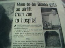 news item 1967 michael garrity airlift from zoo to hospital bimbo monkey