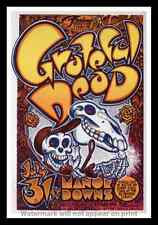"""Framed Vintage Style Rock n Roll Poster """"GREATFUL DEAD AT MANOR DOWNS""""; 12x18"""