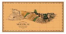 "Big MAP of MOLOKAI Mapa de la isla de Hawaii Islands circa 1897 24"" x 48"""