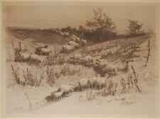 Vintage John Austin Sands Monks Etching Sheep At Pasture 1884