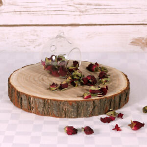 Large Wood Slices | 28-32cm Log Slices | Tree Trunk Wooden Discs Cake Stand