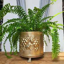 More details for vintage solid brass footed planter lombardy, plant pot, aged patina, farmhouse