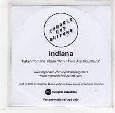 (GD400) Cymbals Eat Guitars, Indiana - 2009 DJ CD