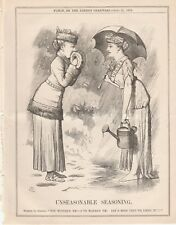 1879 Punch Cartoon Spring Summer Bad Weather Unseasonable Seasoning